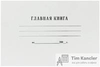 Главная книга бухгалтерская, А4, 48 листов