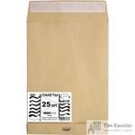 Пакет почтовый Extrapack E4 из крафт-бумаги стрип 300x400 мм (120 г/кв.м, 25 штук в упаковке)