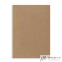 Пакет почтовый С5 из крафт-бумаги декстрин 160х230 мм (80 г/кв.м, 500 штук в упаковке)