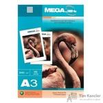 Фотобумага для цветной струйной печати Promega jet Premium Glossy (глянцевая, А3, 240 г/кв.м, 15 листов)