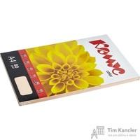 Бумага цветная для офисной техники Комус Color персик пастель (А4, 80 г/кв.м, 100 листов)