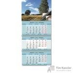 Календарь настенный трехблочный на 2019 год Родные просторы (345x765 мм)