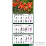 Календарь настенный трехблочный на 2019 год Цветущие маки (305x675 мм)