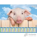 Календарь настенный на 2019 год Символ года (450х590 мм)
