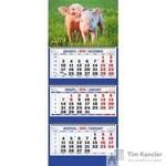 Календарь настенный трехблочный на 2019 год Символ года 1 (310х685 мм)