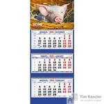 Календарь настенный трехблочный на 2019 год Символ года 2 (310x685 мм)