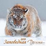 Календарь настенный перекидной на 2019 год Заповедная Россия (285x285 мм)