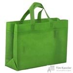 Сумка для покупок спанбонд зеленая (33x26x11 см)