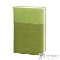 Ежедневник датированный на 2019 год InFolio Patchwork искусственная кожа A5 176 листов зеленый (140х200 мм)