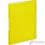 Папка файловая на 60 файлов Esselte Colour'Ice желтая