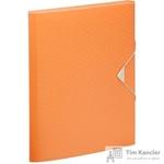 Папка-органайзер Esselte Colour'Ice А4 оранжевая (6 отделений)