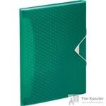 Папка-органайзер Esselte Colour'Ice А4 зеленая (6 отделений)