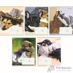 Тетрадь школьная Канц-Эксмо Верные друзья А5 18 листов в клетку (обложка в ассортименте)