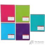 Тетрадь школьная Альт Классика А5 12 листов в крупную клетку (обложка в ассортименте)