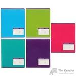 Тетрадь школьная Альт Классика А5 12 листов в узкую линейку (обложка в ассортименте)