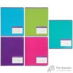 Тетрадь школьная Альт Классика А5 12 листов в частую косую линейку (обложка в ассортименте)
