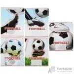 Тетрадь школьная Альт Футбол - моя игра А5 24 листа в клетку (обложка в ассортименте)