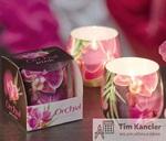 Ароматизированная свеча Orchid, в стакане, 8x7,5 см